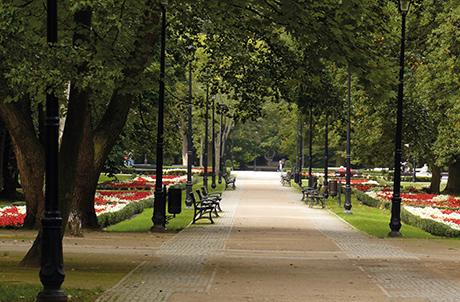 Eine der Hauptpromenaden im heutigen Kurpark von Swinemünde
